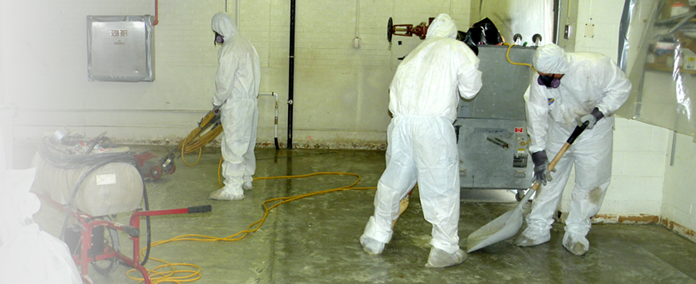 Asbestos and Lead - Inspection & Abatement